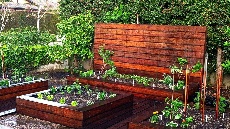 beautiful vegetable gardens vegetable gardens beautiful