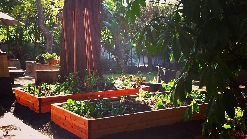 zoe garden
