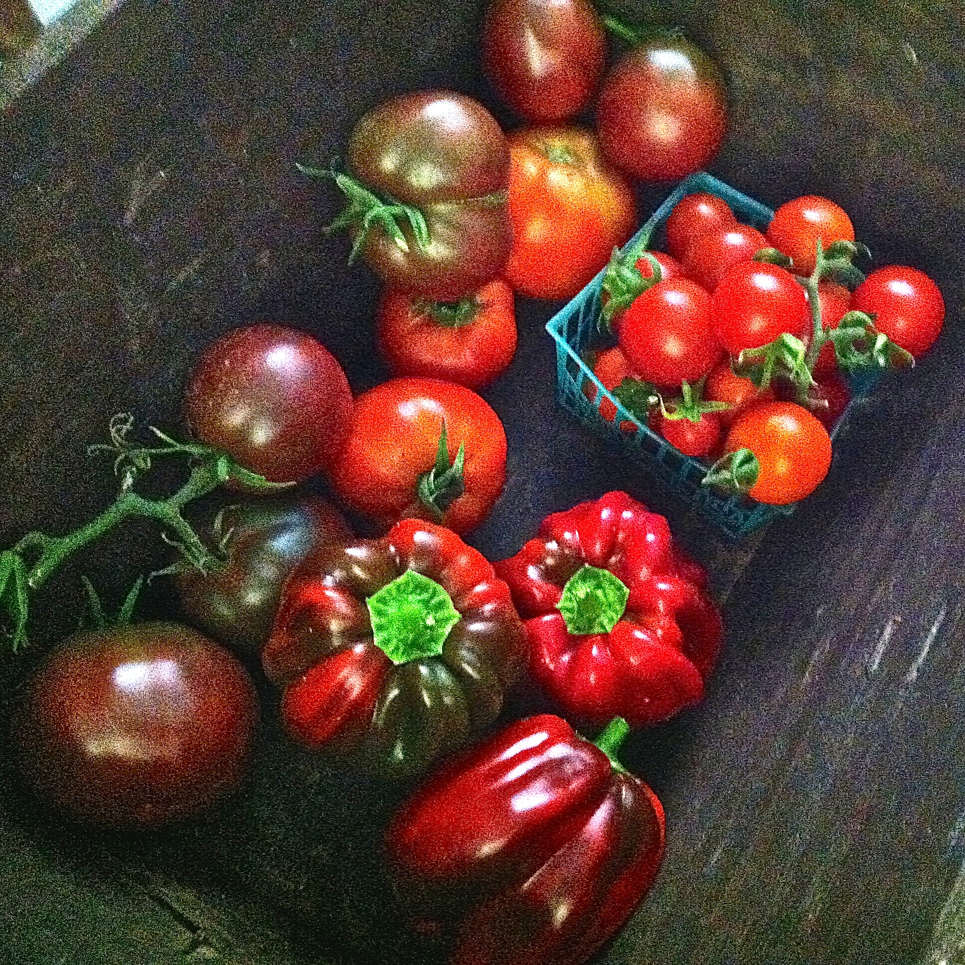 Bell Peppers & Gypsy Tomatoes