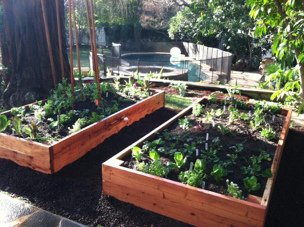 DIY Raised Redwood Bed How To - Hope Gardens Hope Gardens ...