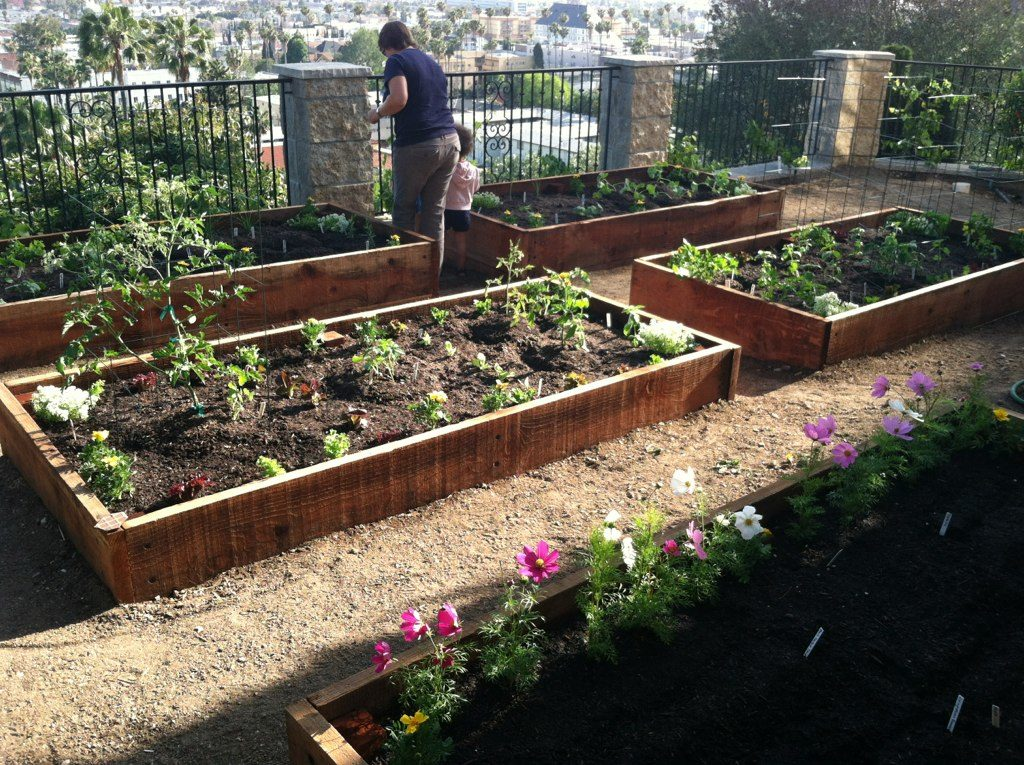 Raised Bed Veggie Gardens - Hope Gardens Hope Gardens Raised